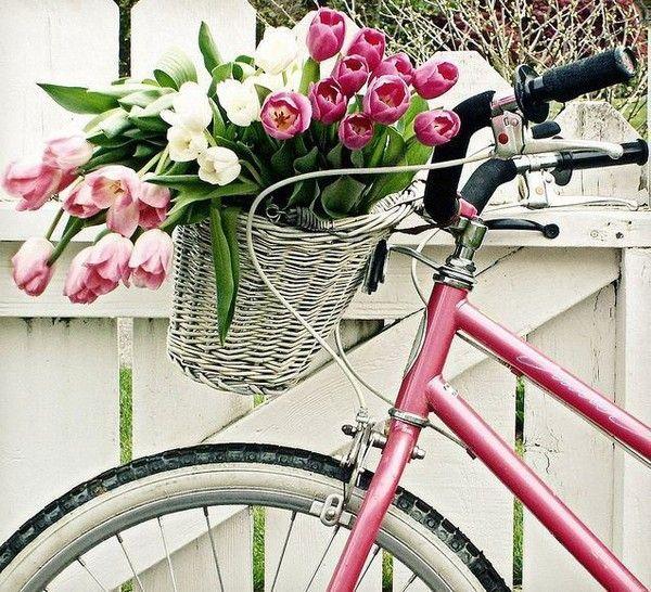 Les tulipes - Page 2 2ac3317e