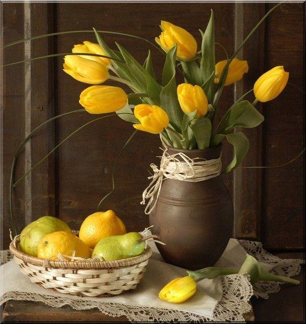 Les tulipes - Page 2 52423c28